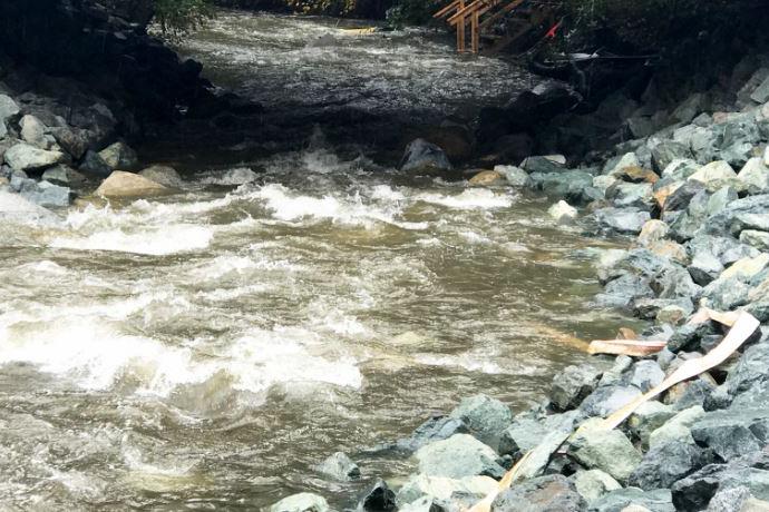 Bear Creek After