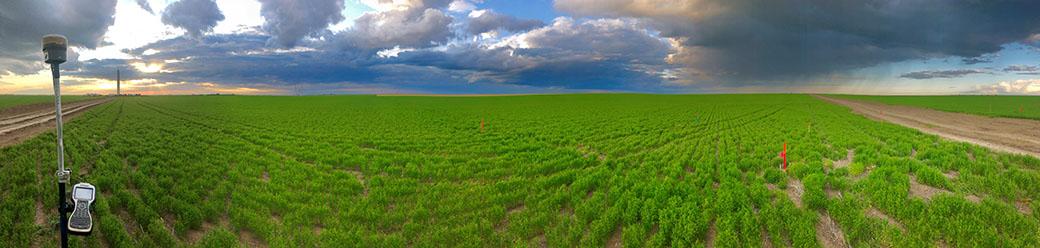 McElhanney survey equipment in a field in Alberta