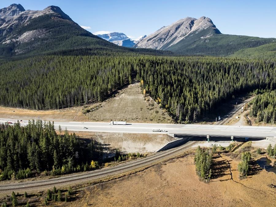 Highway Engineering Services - Asset Management
